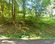 Par 36 & 37 Newman Rd, Gatlinburg image