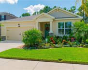 13227 Baby Belle Drive, Riverview image