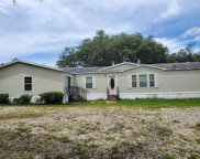 25245 Black Bear Lane, Eustis image