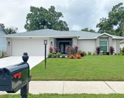 1168 Gillespie Drive N, Palm Harbor image