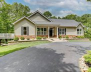 183 Timber Pines  Drive, Defiance image