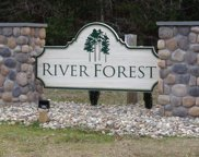 Lot 45 River Forest, Littleton image