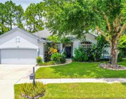 4125 Apple Blossom Road, Lutz image