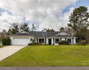 12444 Spreading Oak Drive, Spring Hill image