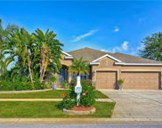 21146 Preservation Drive, Land O' Lakes image