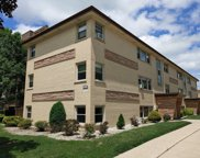 6853 N Olmsted Avenue Unit #1B, Chicago image