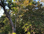 2629 Bluff Rd, Apalachicola image