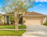 10208 Tapestry Key Court, Riverview image