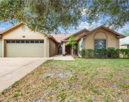 12010 Fruitwood Drive, Riverview image