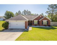 238 Hunters Farm Road, North Augusta image