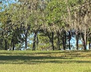 TBD W Hwy 328, Dunnellon image