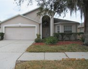 2805 Butterfly Landing Drive, Land O' Lakes image