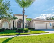 4354 Waterford Landing Drive, Lutz image