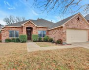 1214 Lake Trail Court, Wylie image