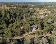 2188  American River Trail, Cool image