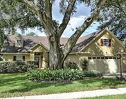339 Pine Shadow Lane, Lake Mary image