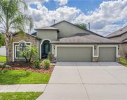 9756 Troncais Circle, Thonotosassa image