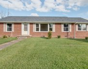 905 Cowan Ave, Shelbyville image