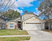 523 Maidenhair Court, Orange City image
