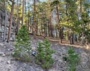 7442 Brook Forest Way, Evergreen image