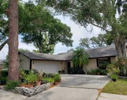 103 Tanglewood Court, Safety Harbor image