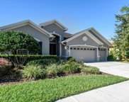 2825 Blueslate Court, Land O' Lakes image