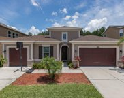1708 Hidden Springs Drive, New Port Richey image