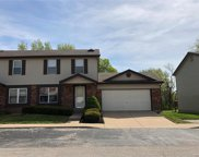 1373 Summergate Pkwy, St Charles image
