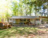 1075 Blount Rd, Meansville image