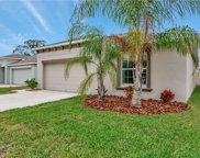 1784 Broad Winged Hawk Drive, Ruskin image