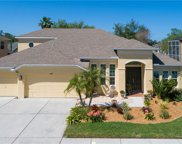 7321 Wild Oak Lane, Land O' Lakes image