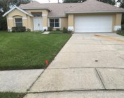 16102 Canton Court, Tampa image