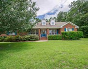 1356 E Conservancy, Tallahassee image