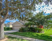 11103 Silver Dancer Drive, Riverview image