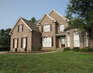 7628 Henson Forest Drive, Summerfield image