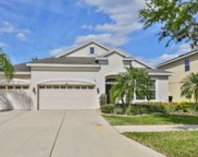 12419 Fairlawn Drive, Riverview image