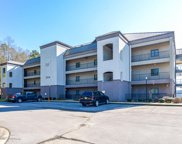 204  County Road 96 Unit 302, Crane Hill image