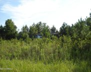 1275 Taylor Estate Road, Williamston image
