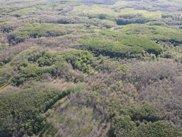 0VL Snake Trail, West Branch image