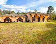 11146 Woodland Waters Boulevard, Weeki Wachee image