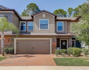 17229 Old Tobacco Road, Lutz image