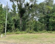 45 River Birch Road, Burgaw image