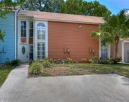 9422 Forest Hills Circle, Tampa image