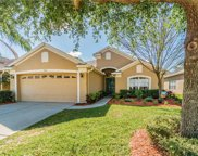 3615 Morgans Bluff Court, Land O' Lakes image