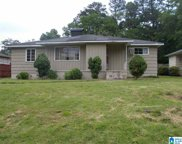 809 Sylvia Drive, Homewood image