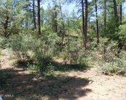 3944 N Orloff Road Unit #349, Pine image