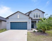 10914 Great Cormorant Drive, Riverview image