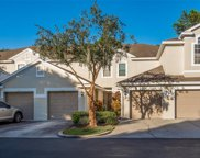 3661 Country Pointe Place, Palm Harbor image
