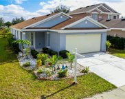 11316 Palm Island Avenue, Riverview image
