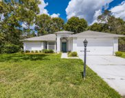 2417 Bent Pine Court, Spring Hill image